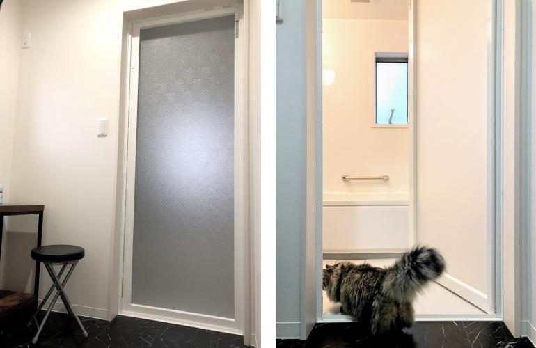 浴室ドアと猫