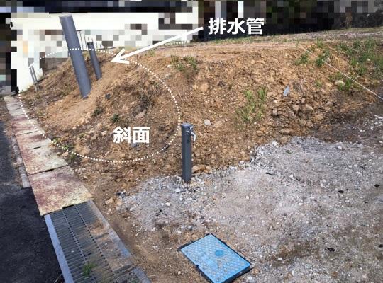 道路側の傾斜地の写真