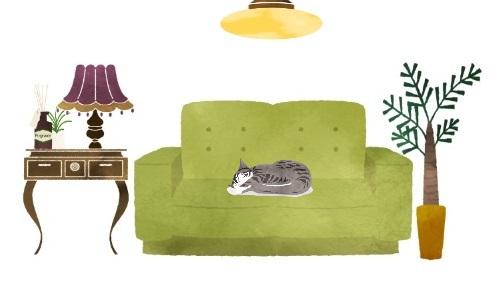 ソファーで眠る猫のイラスト